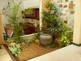 Hol intrare cu plante verzi