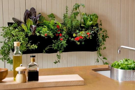 Idei pentru atarnare plante in interior