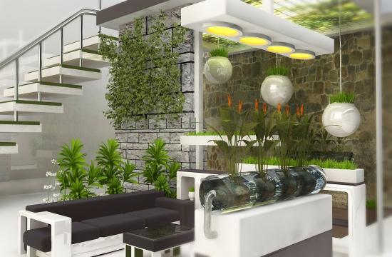Proiectie gradina de interior