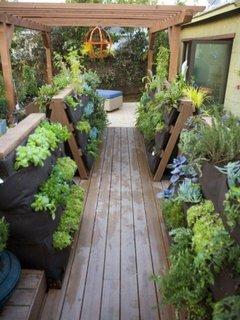 O terasa ingusta cu gradini verticale cu plante