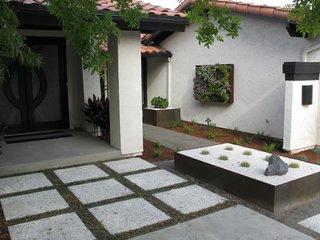 Gradina moderna cu plante suspedate