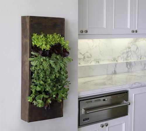 Idee ingenioasa cu dulap cu plante aromatice in bucatarie