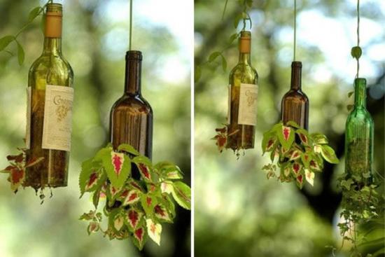 Jumatati de sticle de vin cu plante