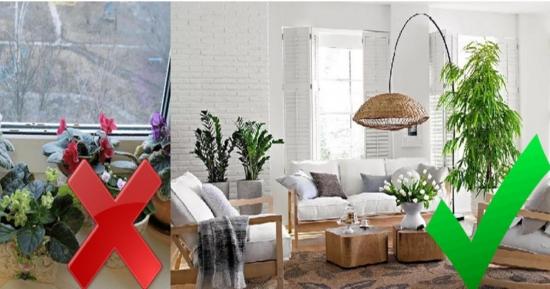 8 cele mai frecvente greseli in interiorul locuintelor noastre, pe care designerii le corecteaza in primul rand