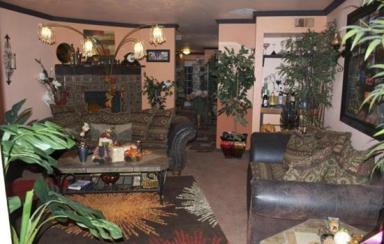 living cu multe plante decorative