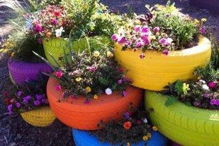 Cauciucuri vechi vopsite si transformate in jardiniere de flori