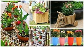 Modele inedite de ghivece pentru flori