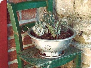 Sita veche pentru pasta reconditionata si folosita pe post de ghiveci de flori