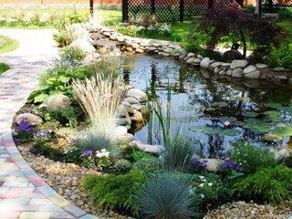 Flori si iarba ornamentala pentru iazuri de gradina
