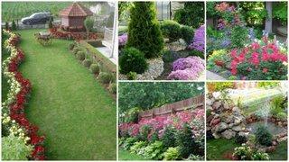 Amenajari gradini cu flori frumoase