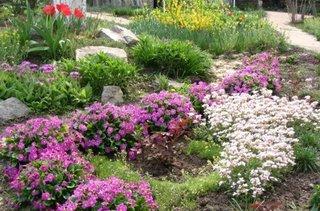 Gradina cu flori roz si albe