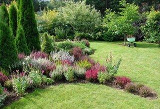 Gradina cu plante colorate
