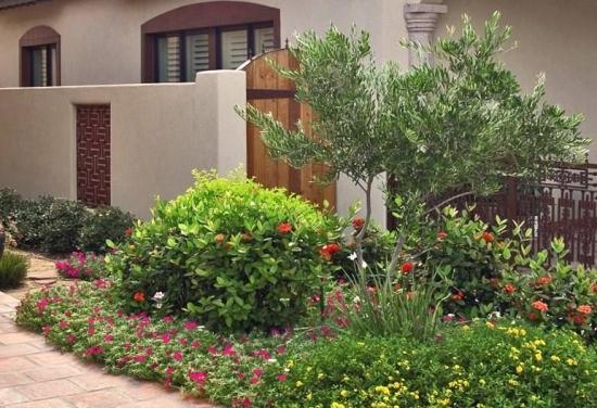Gradina cu plante exotice