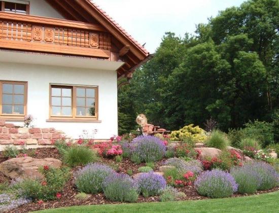 Gradina in fata casei amenajata cu flori colorate