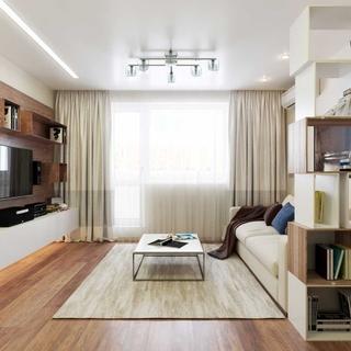 Decor living apartament mic