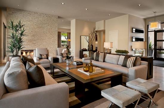 Living cu perete cu piatra cu mobila moderna