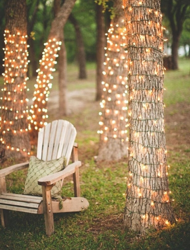 Copaci cu plase de lumini
