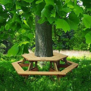 Masa cu bancuta in jurul copacului