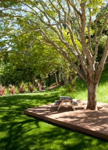 Terasa cu umbra naturala de copac