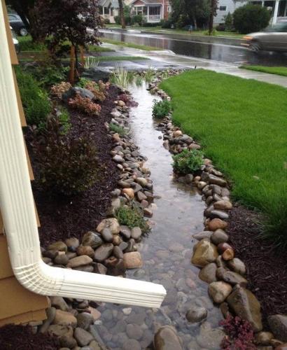 Parau captare ape pluviale in curte