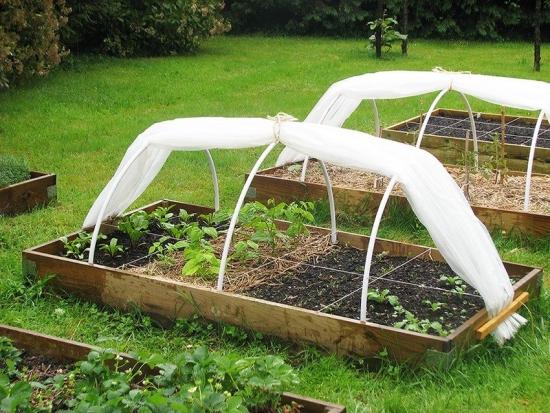 Solarii mici pentru legume