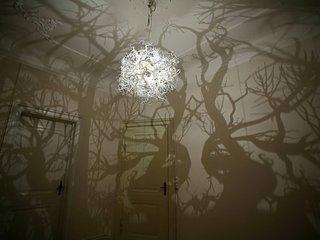 Efecte vizuale de copaci si paduri in casa
