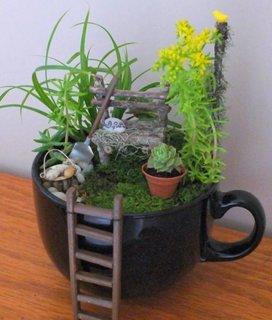 Aranjament frumos intr-o cana veche de ceai
