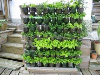 Gradina verticala din pet-uri pentru plante aromatice