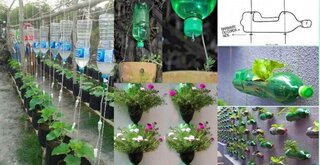 Idei folosire sticle din plastic