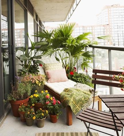 Balcon neinchis amenajat cu un sezlong si plante decorative si cu flori