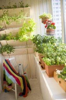 Idee pentru aranjarea florilor in balcon