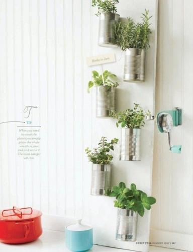 Gradina verticala cu plante in cutii de tabla