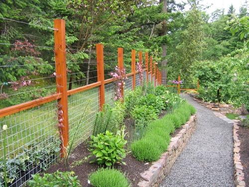 Gard de gradina din lemn si plasa si sarme pentru plantele cataratoare