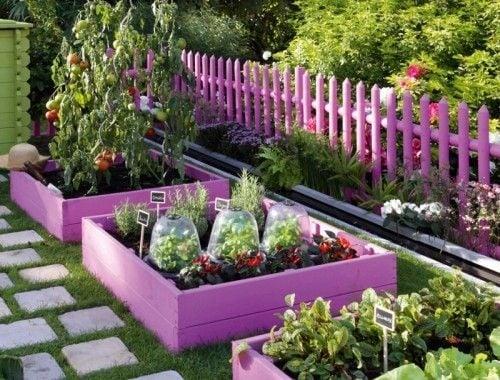 Gard din lemn pentru gradina din tarusi vopsiti roz lila