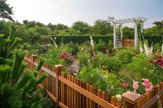 Gard din lemn tratat cu lazur peisaj de vis cu gradina de flori