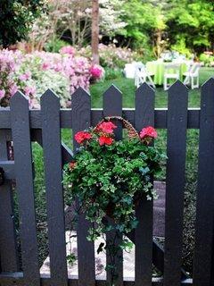 Gard din lemn vopsit cu negru si cu ghiveci cu flori curgatoare