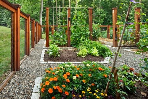 Idee de imprejmuire a gradinii cu gard cu cadru de lemn si plasa