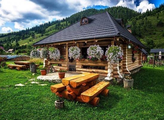Peisaj rustic cu gazon de munte