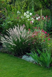 Gradina cu flori inalte combinate cu gazon