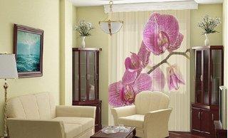 Jaluzele imprimate cu model orhidee