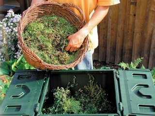 Crengi si frunze tocate compost