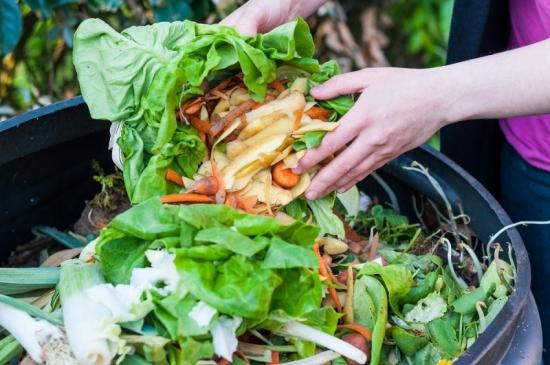 Deseuri organice compost