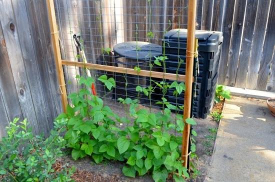 Mascare lada compost