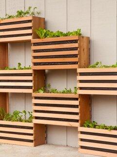 Ghiceve mari din lemn pentru legume