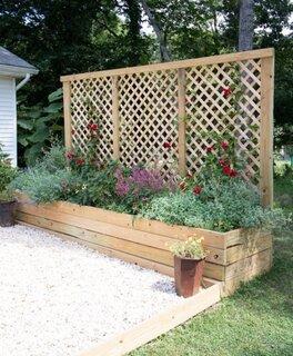Ghivece cu suport din lemn pentru plante cataratoare