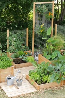 Idee amenajare gradina legume cu lemn