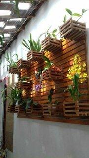 Perete din lemn cu ghivece