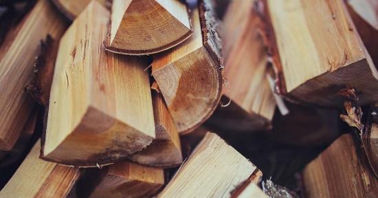 Care sunt cele mai bune lemne pentru foc | Fa focul, fara sa arunci banii pe foc!