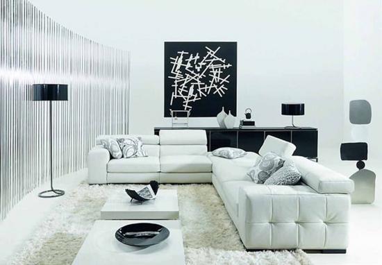 Decor modern living alb cu negru