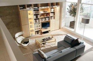 Biblioteca cu rafturi deschise si rafturi cu sticla opaca,luminata